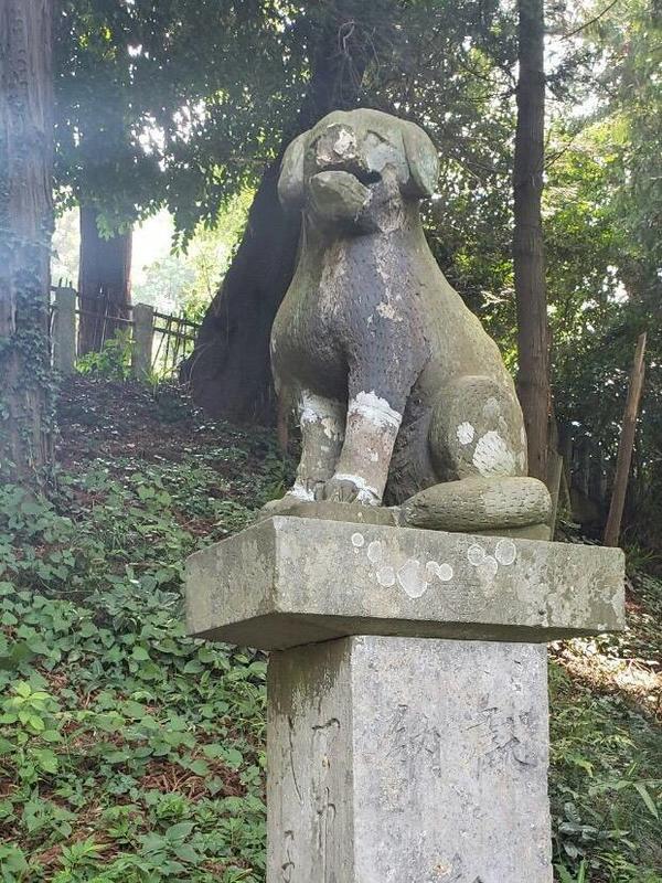 氷川神社(鴻巣市滝馬室)